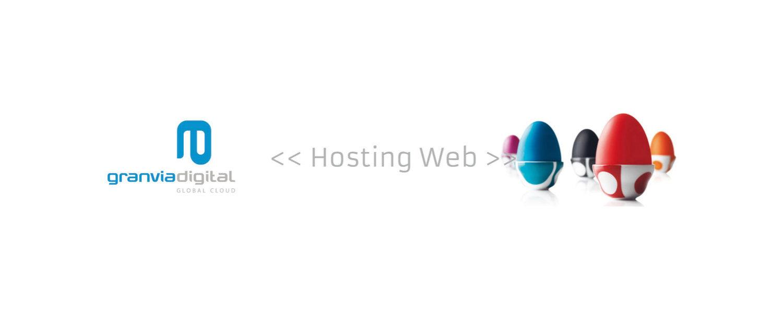 Servicios profesionales de hospedage o hosting web